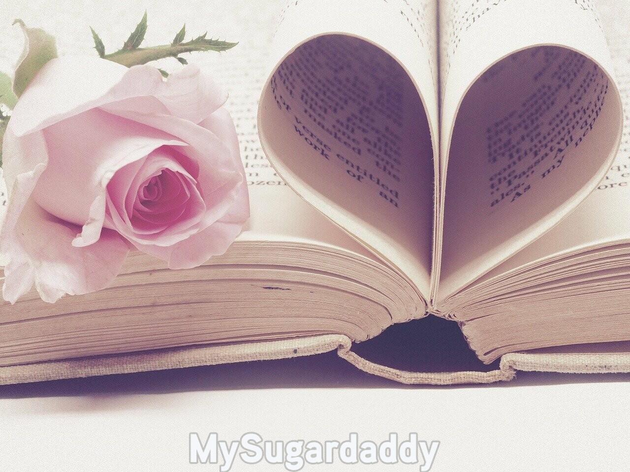 apprendre à draguer livre rose amour cœur conseils drague
